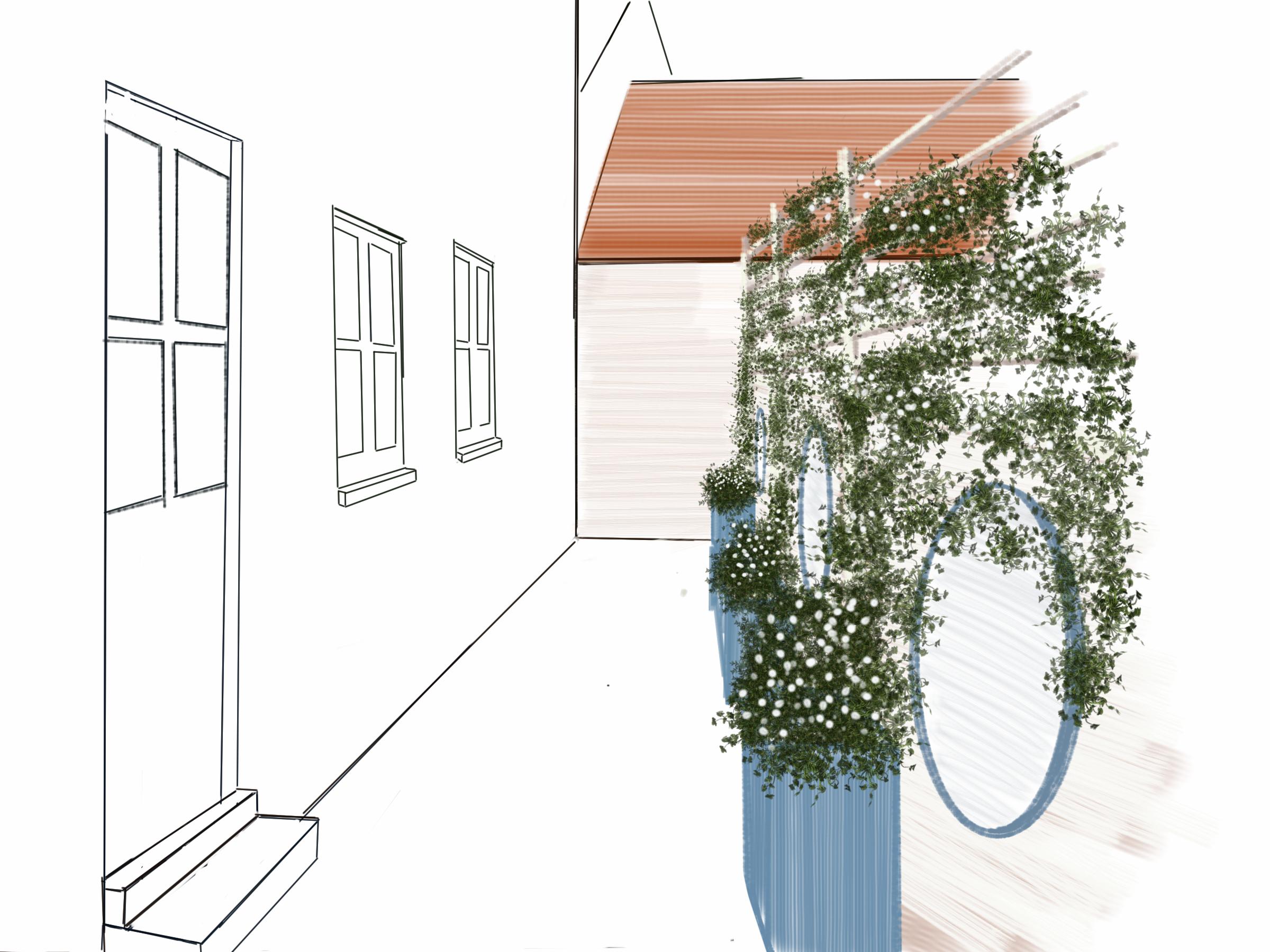 Narrow Gardens and Courtyards PlantPlots